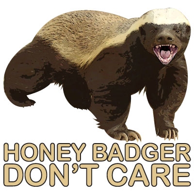 Honey badger dont give a shit - photo#36